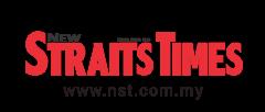 MDT-NST